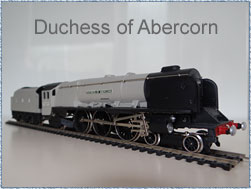 Wrenn Duchess of Abercorn